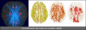 nodos
