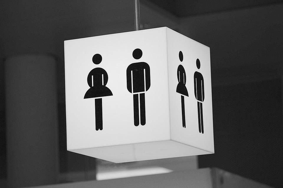 Francia rechaza la opción 'intersexual' en documentos oficiales