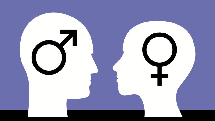 Profesor sueco acusado de intolerancia por decir que hombres y mujeres «biológicamente diferentes»