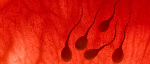 """EE. UU .: El fraude en la maternidad, por inseminación, tan penalizado como """"agresión sexual"""" en Texas"""